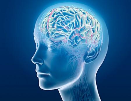 برای کاهش وزن روی مغزتان تمرکز کنید