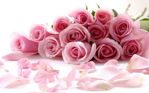 گلها را بو کنيد تا باهوش شويد!