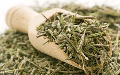 گیاهان کاهش دهنده قندخون + روش مصرف