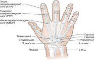سردی انگشتان دست و پا، نشانه بیماری است