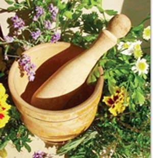 سدر عطاری گیاه
