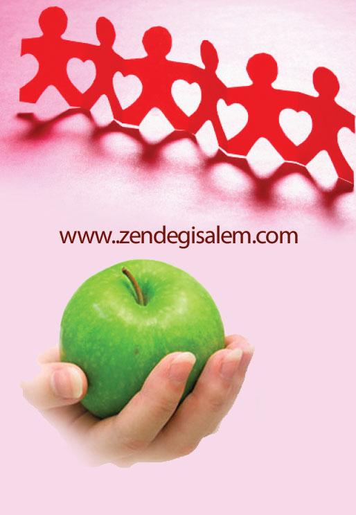 خیریه حضرت زینب