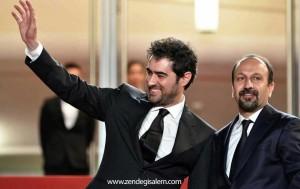 شهاب حسینی در کن