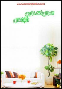 فنگ شویی با گیاهان آپارتمانی