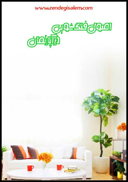 فنگشویی در آپارتمان با گیاهان