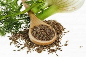 با همه خواص گیاه رازیانه آشنا شوید./خواص رازیانه برای خانمها
