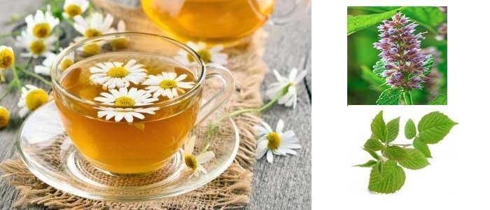 آشنایی با خواص شفابخش و مفید گیاهان/درمان با گیاهان