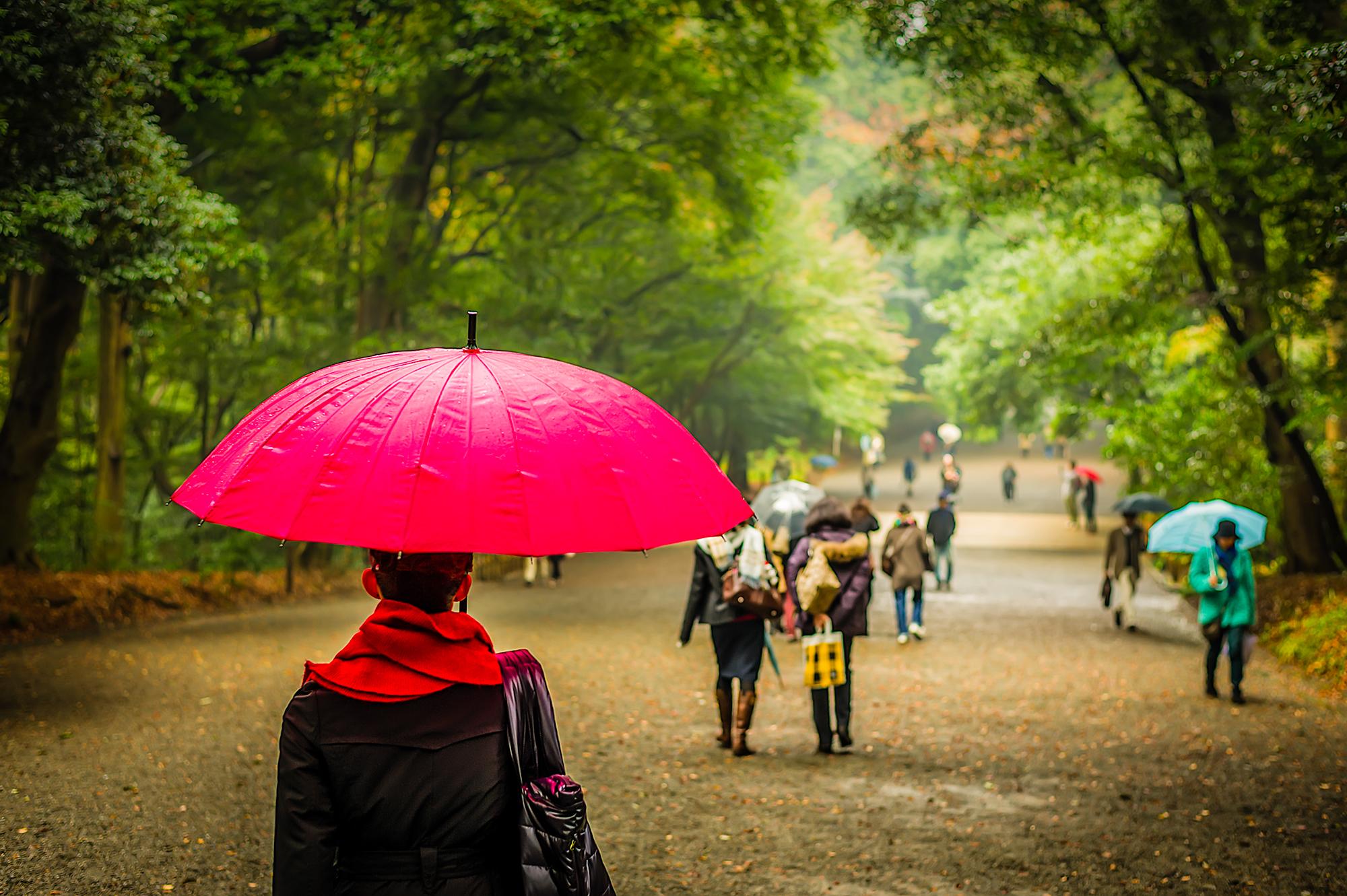 بهار با چتر صورتی و چمدان سبز / یک داستان کوتاه از زبان کوتاه و کودکانه