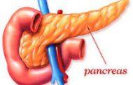 سرطان پانکراس  بیسروصدا میآید