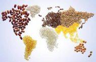 روز جهانی غذا (از مزرعه تا سفره)