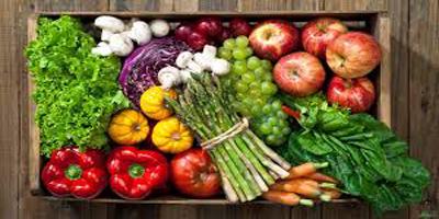 آیا گیاهخوار شدن مضر است؟